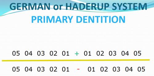система нумерации Хадерупа